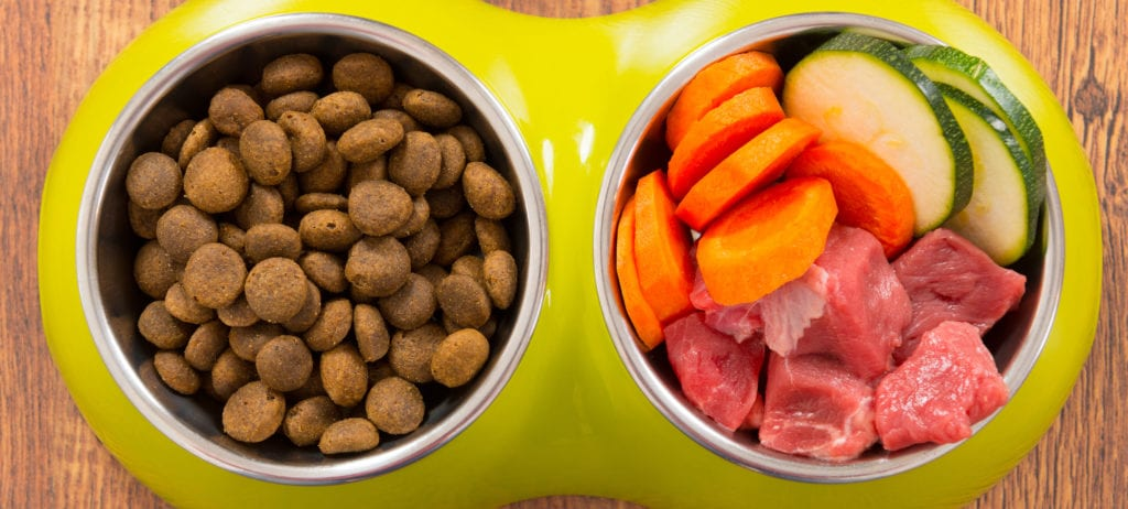 Kibble and raw pet food