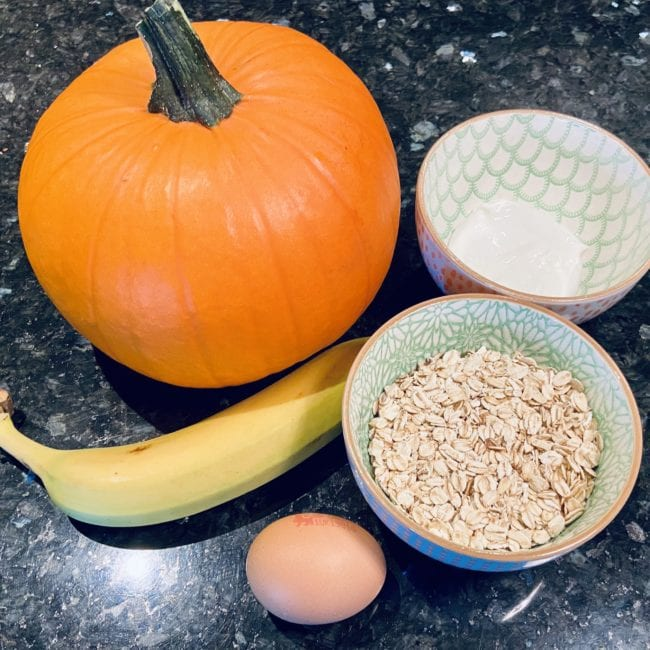 Pumpkin pie for dogs ingredients