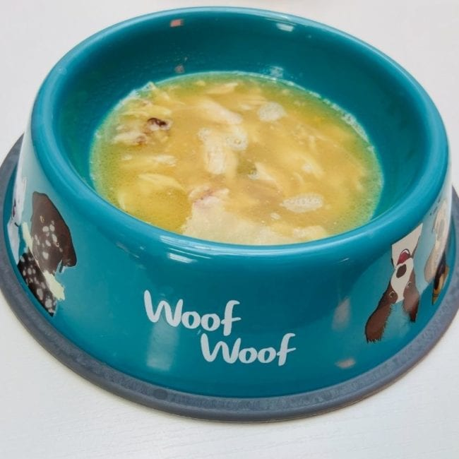 bowl of bone broth for dogs