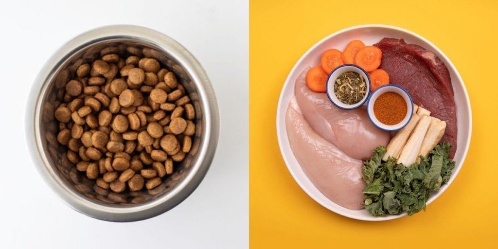 bowl of dry food and bowl of fresh dog food